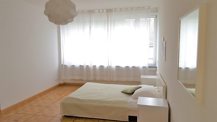 3½ room apartment in Basel - Spalen, furnished