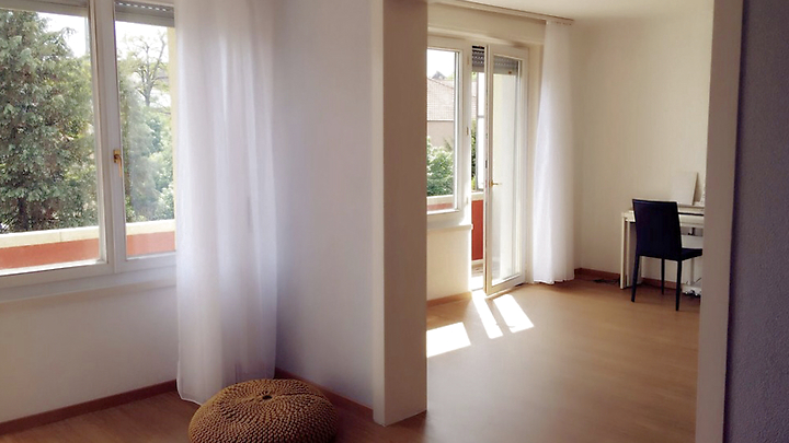 2½ room apartment in Bern - Mattenhof, furnished