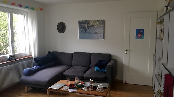 2½ room apartment in Zürich - Kreis 3 Binz, furnished, temporary