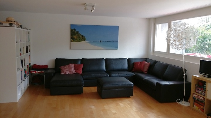 1 room apartment in Küsnacht (ZH), furnished, temporary