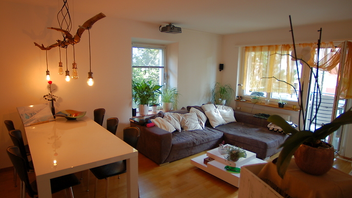 2½ room apartment in Zürich - Kreis 6 Oberstrass, furnished, temporary