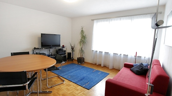 2½ room apartment in Basel - Bachletten/Gotthelf, furnished