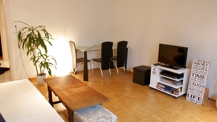 3 room apartment in Basel - Bachletten/Gotthelf, furnished, temporary