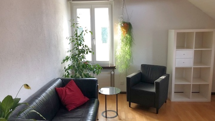 Room in shared apartment in Zürich - Kreis 7 Hirslanden, furnished