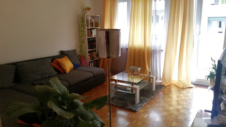 3 room apartment in Luzern, furnished, temporary