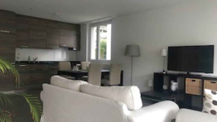 2½ room apartment in Eglisau (ZH), furnished