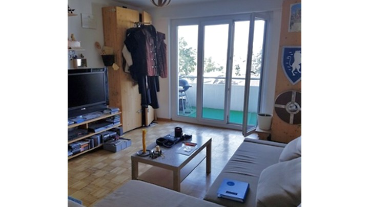 3½ room apartment in Höri (ZH), furnished, temporary