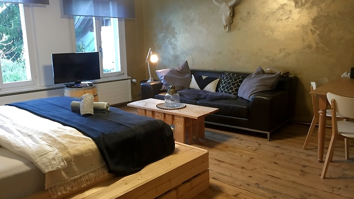 1 room apartment in Steckborn (TG), furnished