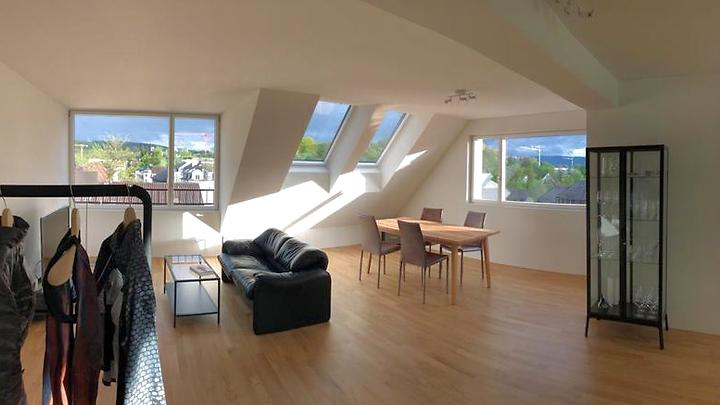 3½ room apartment in Zürich - Kreis 7 Hirslanden, furnished, temporary