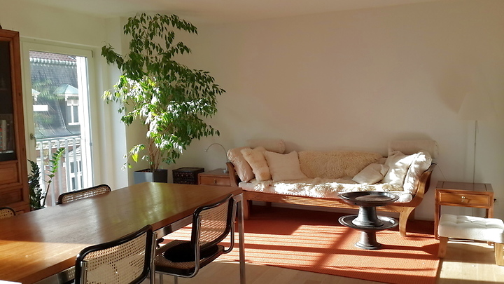 2 room apartment in Basel - Altstadt/Grossbasel, furnished, temporary
