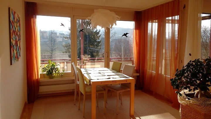 4½ room apartment in Oberwil (BL), furnished, temporary