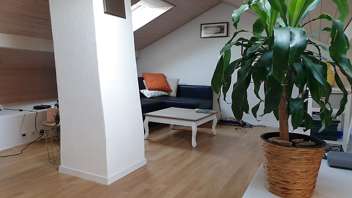 3½ room attic apartment in Bern - Murifeld, furnished, temporary