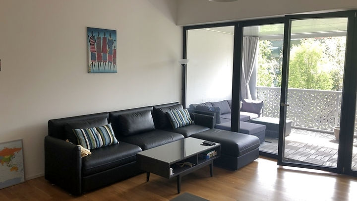 2½ room apartment in Zürich - Schlieren, furnished, temporary