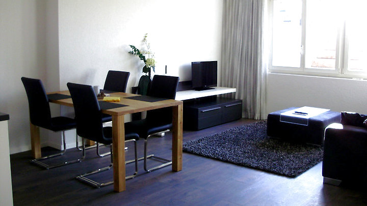 1½ room apartment in Uster (ZH), furnished