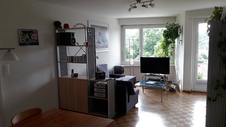 2½ room apartment in Zürich - Kreis 2 Wollishofen, furnished, temporary