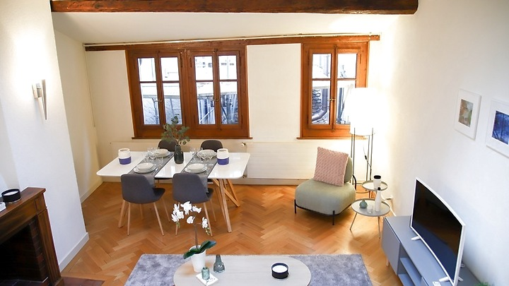 3½ room attic apartment (penthouse) in Genève - Centre, furnished