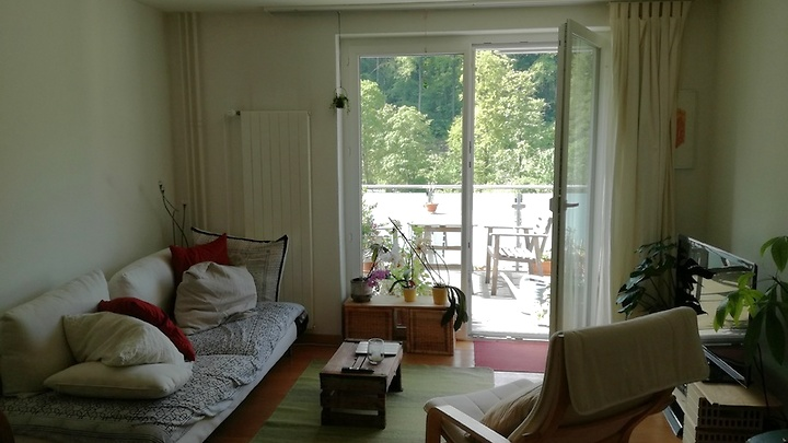 3 room apartment in Winterthur - Wülflingen, furnished, temporary