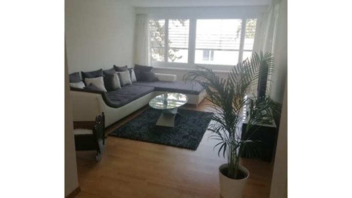 4½ room apartment in Schaffhausen, furnished, temporary