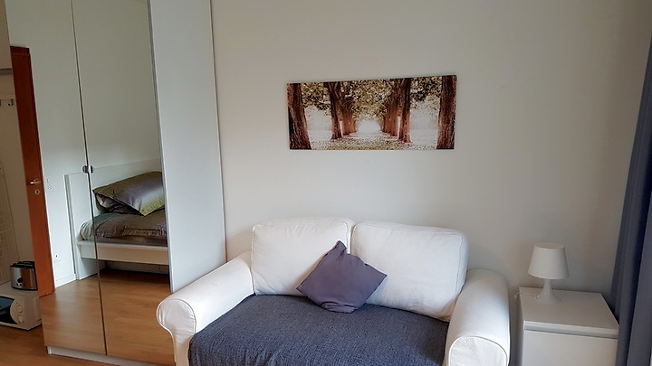 1 room apartment in Basel - Spalen, furnished