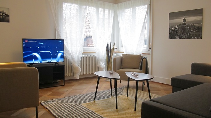 3½ room apartment in Zürich - Kreis 3, furnished