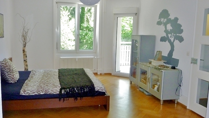 Room in shared apartment in Basel - Gundeldingen, furnished