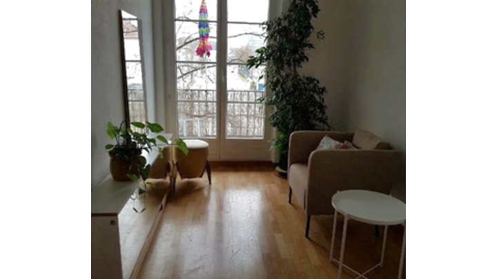 2 room apartment in Bern - Breitenrain, furnished