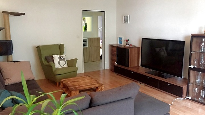 5½ room apartment in Tann (ZH), furnished, temporary