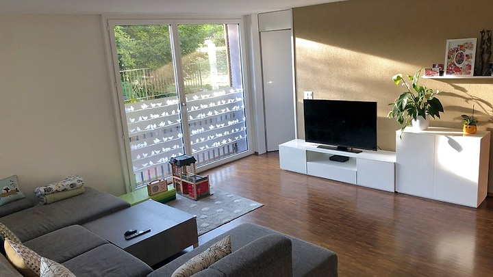 4½ room apartment in Winterthur - Stadt, furnished, temporary