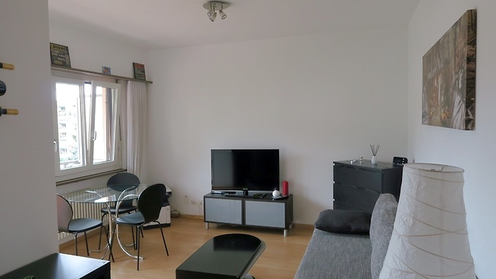 2 room apartment in Viganello (TI), furnished, temporary