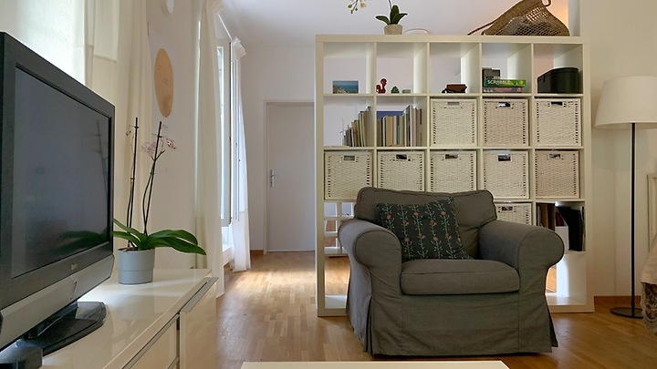 1½ room apartment in Zürich - Kreis 6, furnished