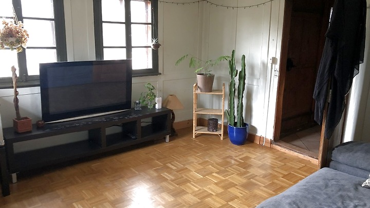 3 room apartment in Ebikon (LU), furnished, temporary