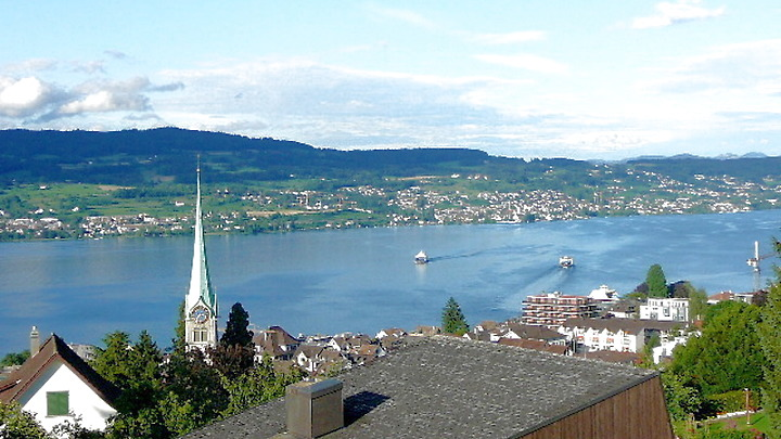 7 room house in Horgen (ZH), furnished