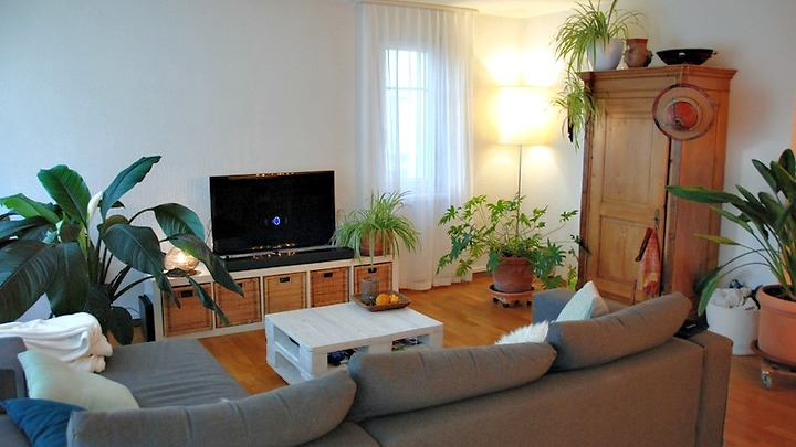 3½ room apartment in Dübendorf (ZH), furnished, temporary