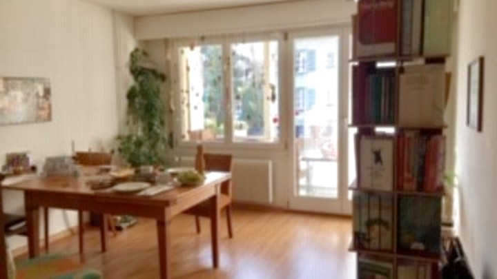 3 room apartment in Bern - Murifeld, furnished, temporary